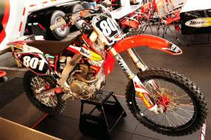 Alessi is returning to the Lites