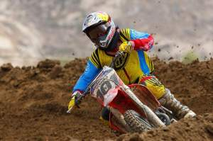 David Pingree? Who's that guy?