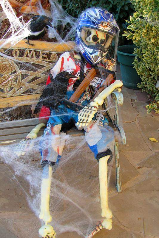Moto Skeleton (Vote at facebook.com/racerxonline)