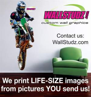 WallStudz Custom Wall Graphics