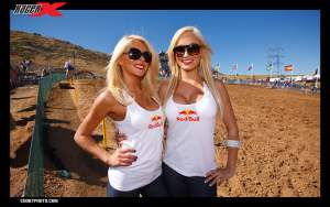 Red Bull Ladies