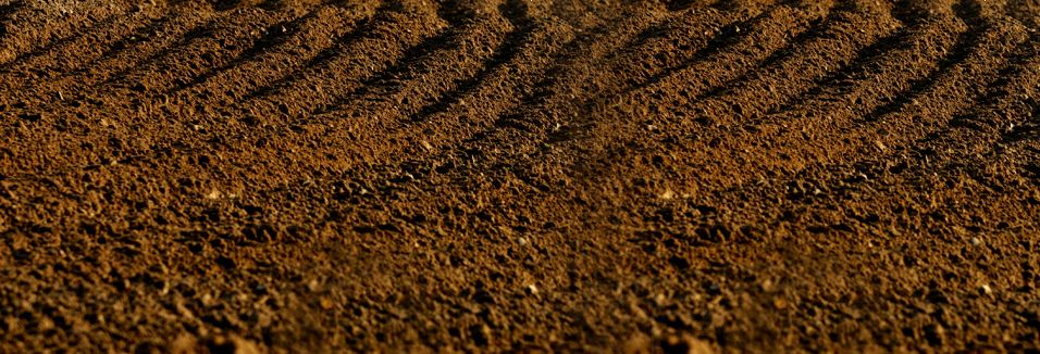 <strong>Racer X Films:</strong><br /> The Spot, Millville
