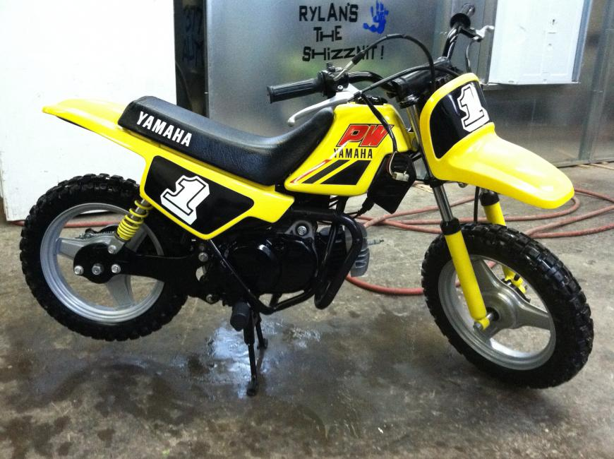 Your Collection Yamaha PW50