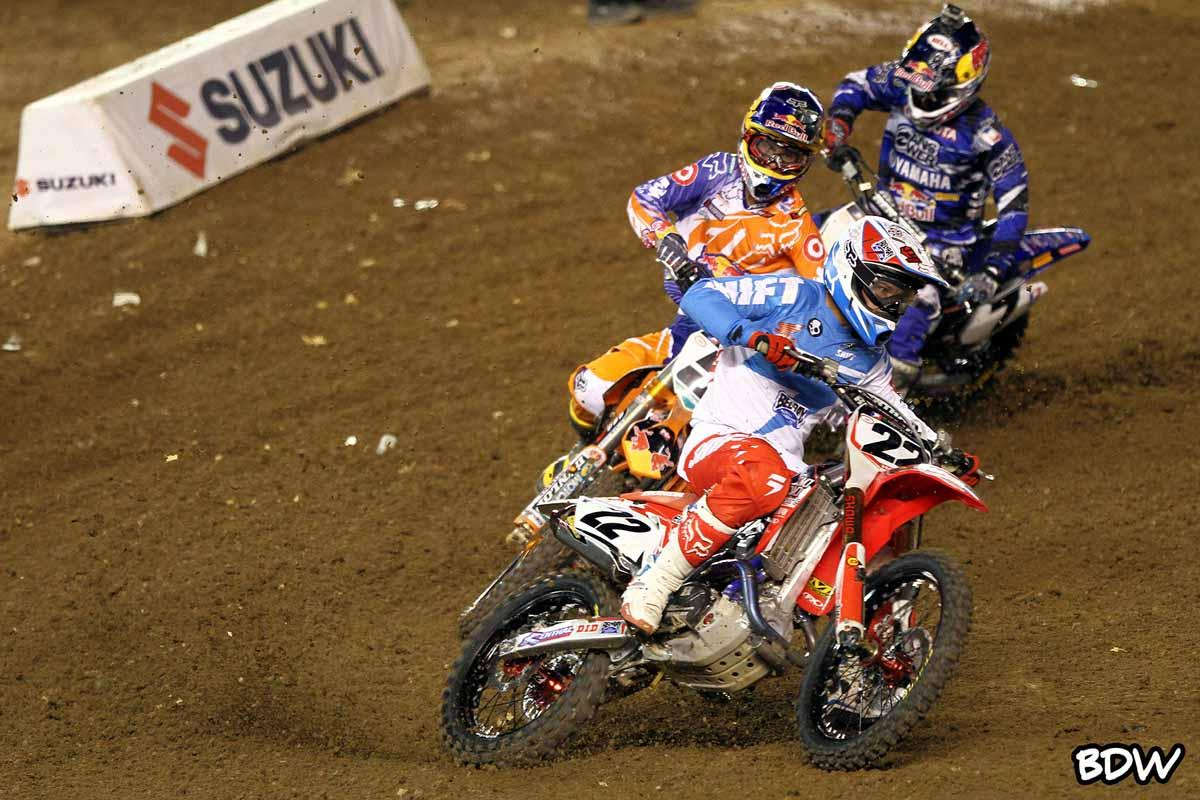 Reed, Dungey and Stewart // BrownDogWilson
