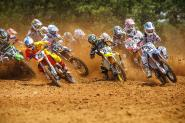Freestone Wallpapers