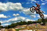 250 Words: Unadilla