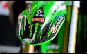 Hill's Monster Kawi