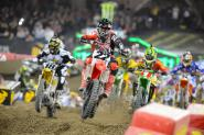 Toronto SX Wallpapers