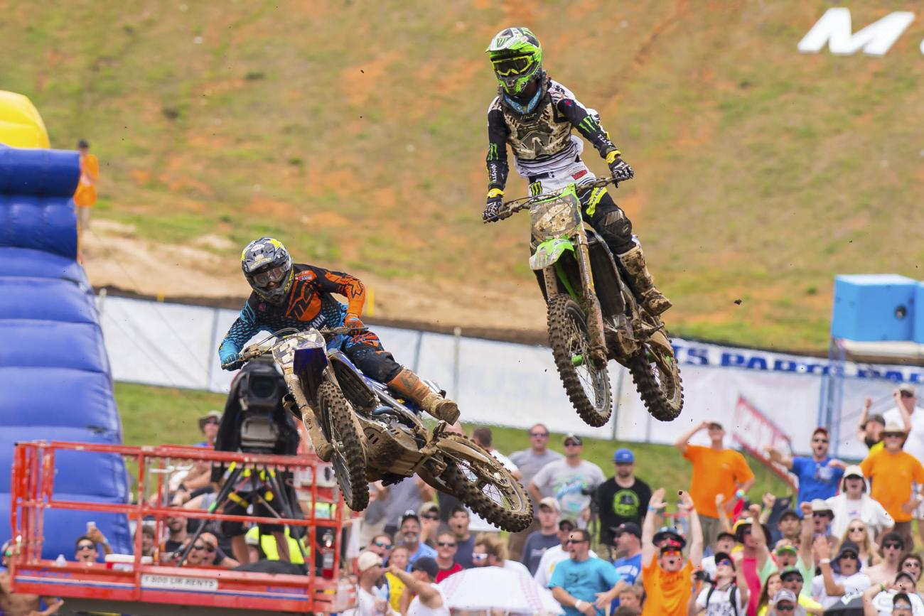 Observations: Muddy Creek