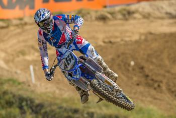 Insight: Romain Febvre